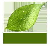 Castlegrey Landscapes Logo